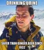 Meme of Bear Grylls with Donoghue -v- Stevenson-related caption